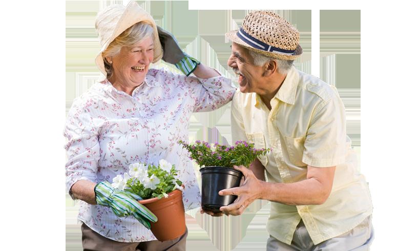 Штатное расписание пансионата для престарелых пансионат престарелых волгодонск